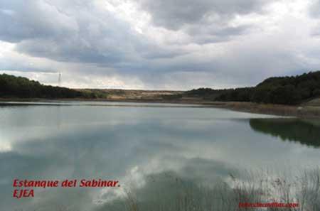 Estanque-del-Sabinar